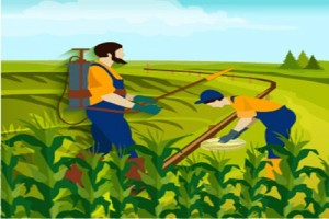 Controlled Release Fertilizers Market to grow at 5.6% CAGR till 2024