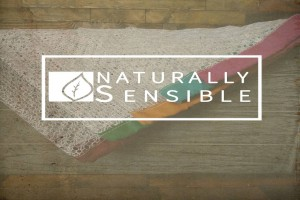SPRING HILL, FLORIDA ECOMMERCE STORE BRINGS NEW REUSABLE, BIODEGRADABLE AND ECO-FRIENDLY PRODUCE BAGS AND GROCERY CART BAGS TO CONSUMERS.