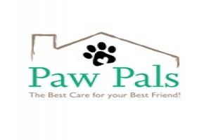 How Often Should I Walk My Puppy Answered By Fairfax Dog Walking Company