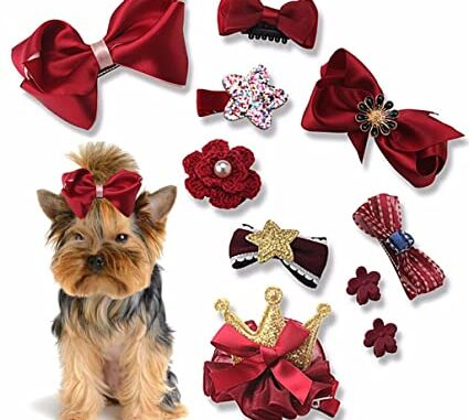 pet grooming products